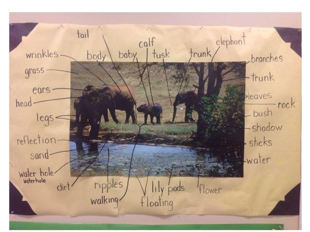 Elephants Sound Board by Russell Munkler