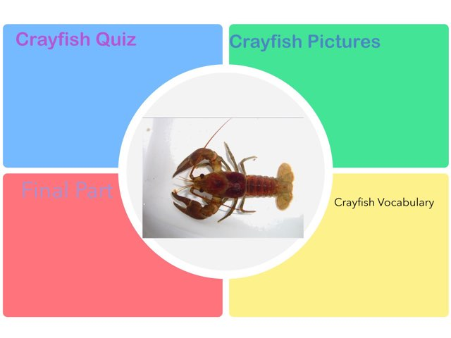 Ella's Crayfish Learning by Chris  Smith