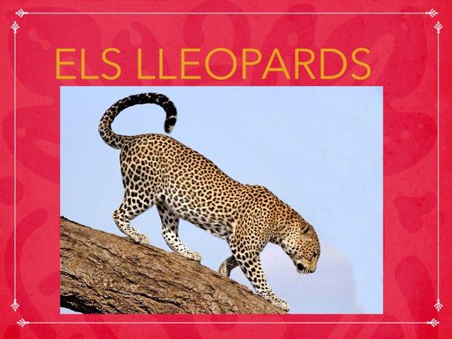 Els Lleopards by Teresa Ibàñez