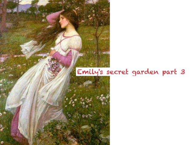 Emily's Secret Garden Part 3 by 璐 方