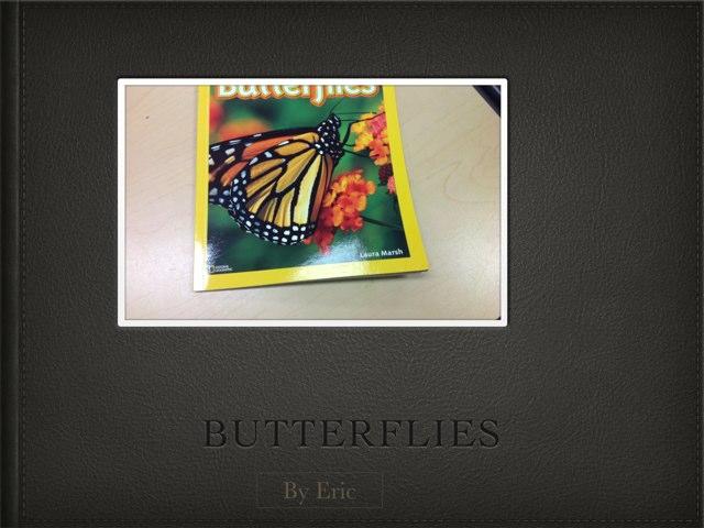 Eric Butterflies by P302 SAS