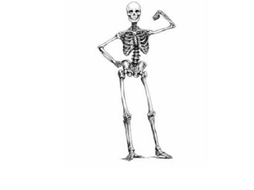 Esqueleto by raquel Lores Couto