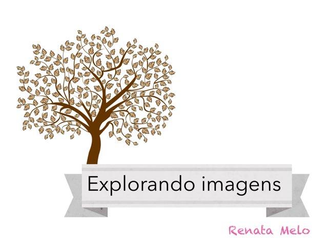 Explorando Imagens by Renata Melo