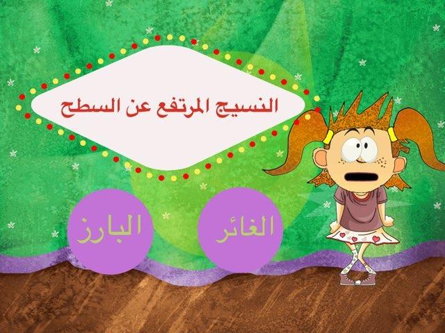 لعبة 52 by Rana Alkhattabi