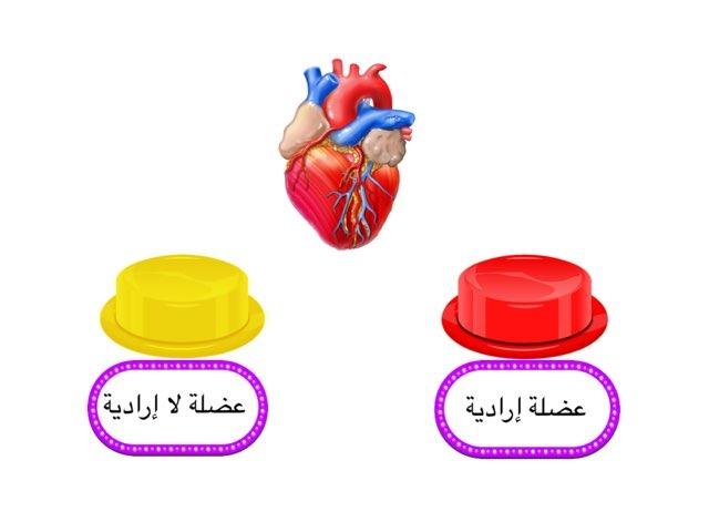 Huhuh by Noura Alshrifi