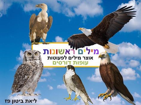 בעלי חיים  עופות דורסים מילים ראשונות by Liat Bitton-paz