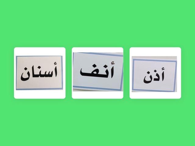 تجريد كلمة أنف by Omhaiouna Saad