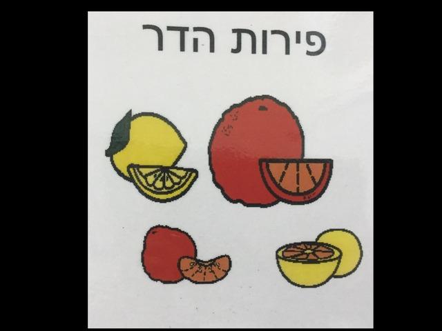 פרות הדר by Anat Rizenman Beit Issie Shapiro