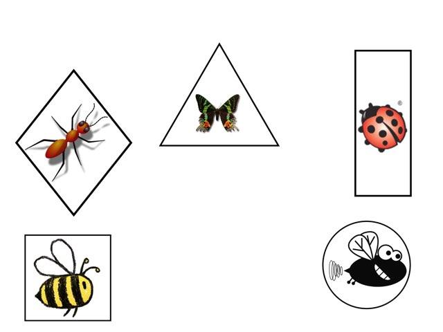 Spel met insecten  by Kim Billiet