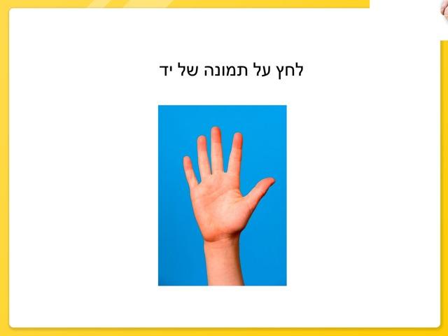 ידיים by Inbar Adar