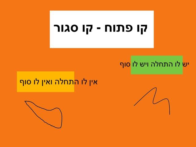 מצולעים-קווים by יעל קובו