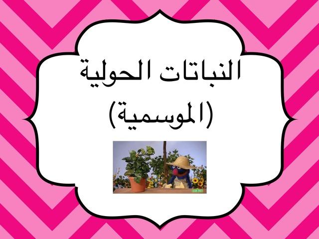 النباتات الحولية by Noura Abdulaziz Al-amr