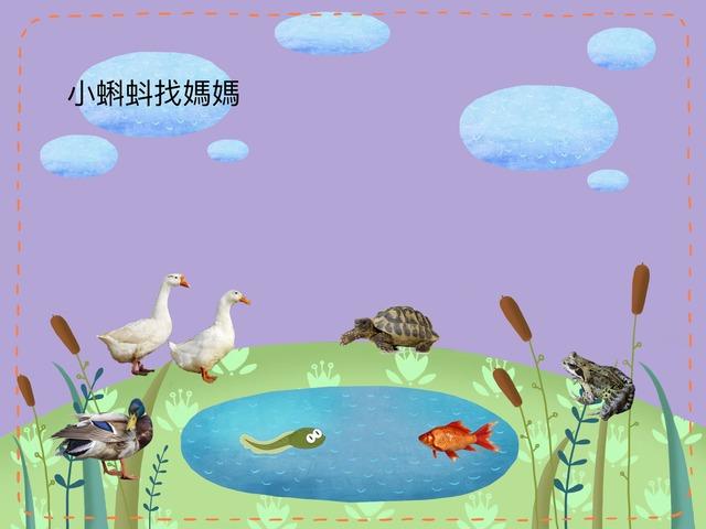 小蝌蚪找媽媽 by Chinese International School Reception