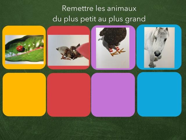 Ouvre Les Yeux / Ranger Petit Au Plus Grand by Veronique Blais