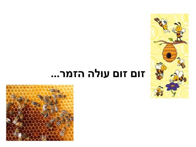 זום זום עולה הזמר  by Masha Roytman