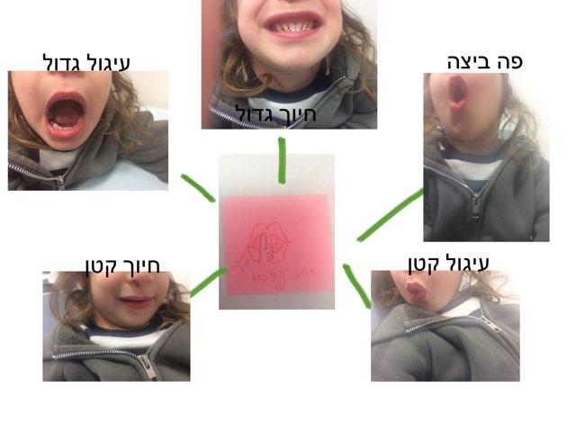 פנחס הפקת ש׳ by בת אל  קשבי ילין