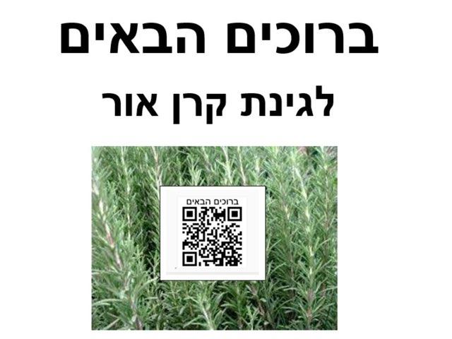 סיור קולי בין  צמחי התבלין by Orit Avner