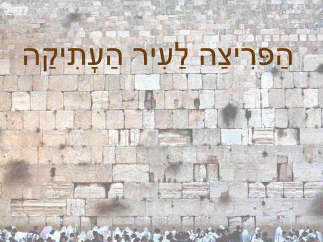 הר הבית בידינו by יפית אבני