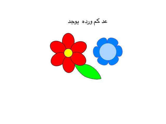عد واحط الاجابه الملائمة by Rasha Mresat