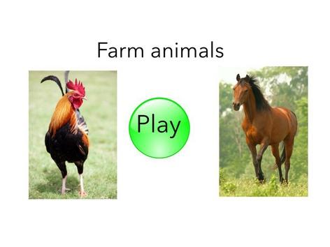 Farm Animals English (USA) by