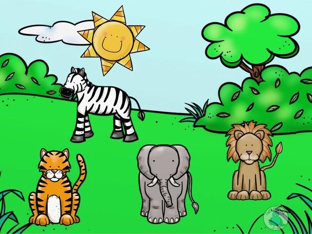 انواع الحيوانات by maha yousef