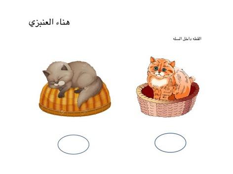 المفاهيم by Hanaa Alanbari