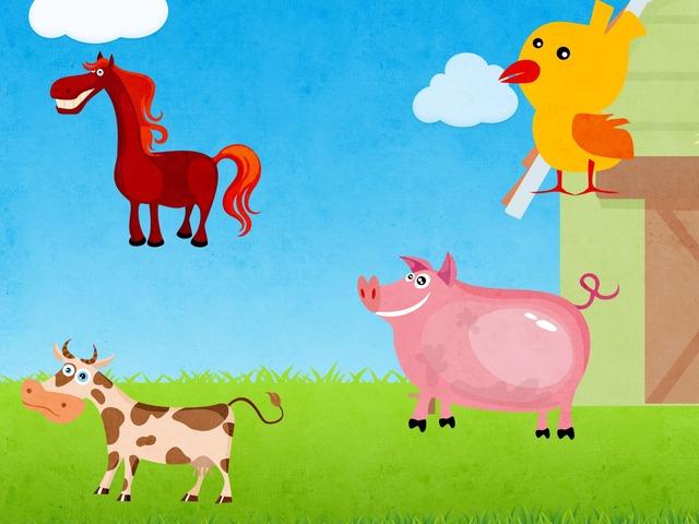 Etsi Eläimet by Sari Nissinen