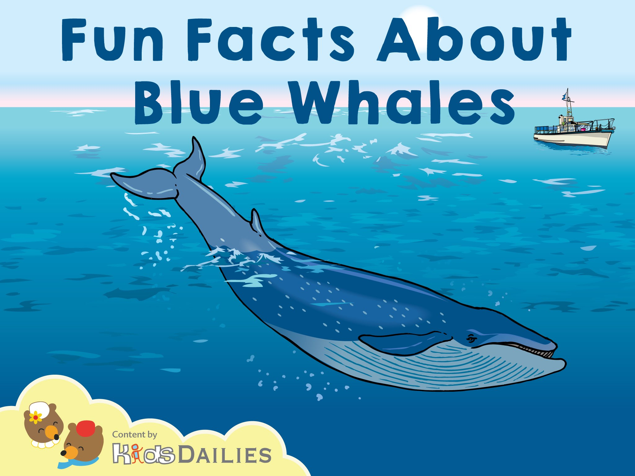 Fun Facts About Blue Whales by Kids Dailies - Educational
