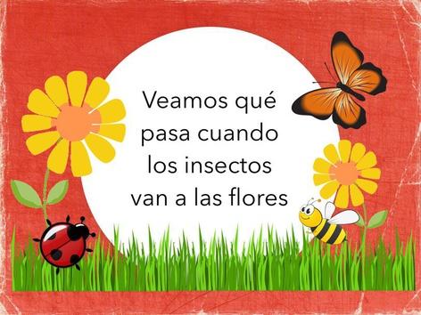 Oraciones De 3 Palabras Y Los Insectos by Marcela Frias Pfeiffer