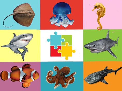 The Puzzle Of The Animals In The Sea by Liat Bitton-paz