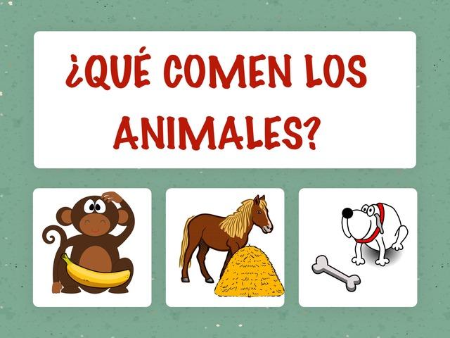 ¿Qué comen los animales? by Hadi  Oyna