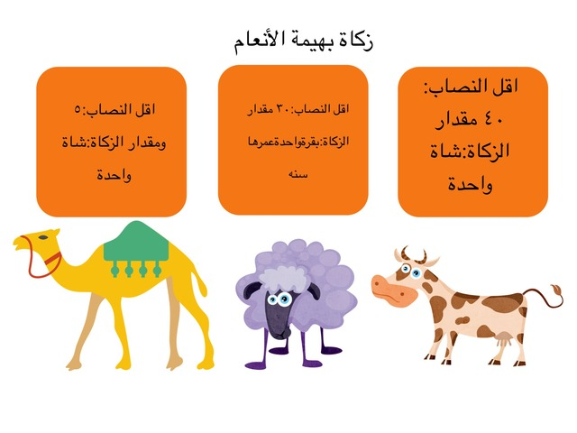 زكاة بهيمة الانعام by Wedad N