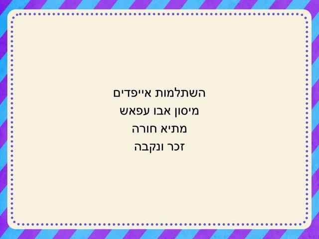 المذكر والمؤنث by maysoon abu affash
