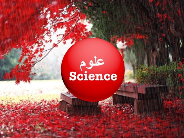 العلوم Science  by Majd Almubarak