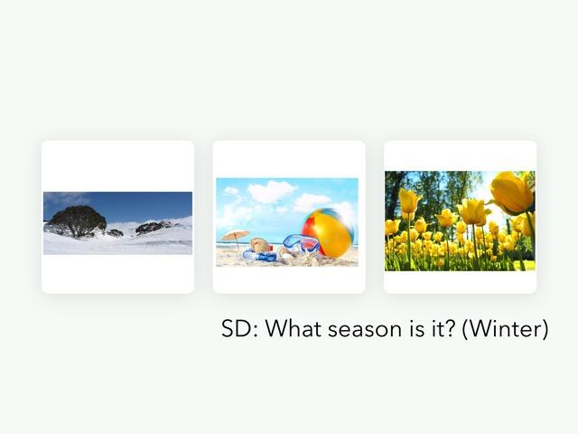 Seasons  by Nicole Lombardi