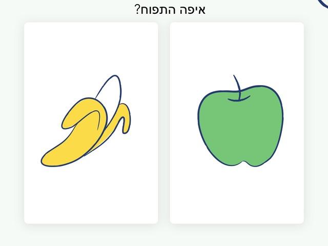 התאמה by Miri Alkoby