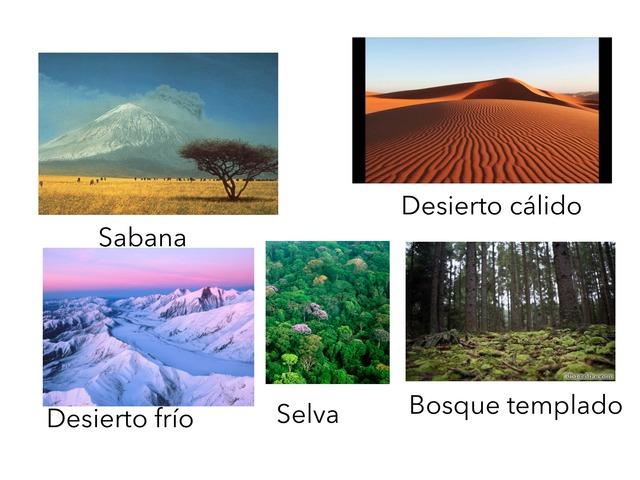 Puzzle De Los Ecosistemas by Eva Arenillas