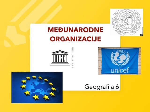 MEĐUNARODNE ORGANIZACIJE 6 by Sanja
