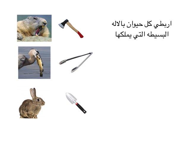 لعبة الالات البسيطة by abla ohoud