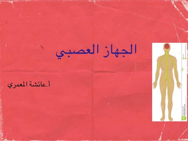 الجهاز العصبي by aisha90 91