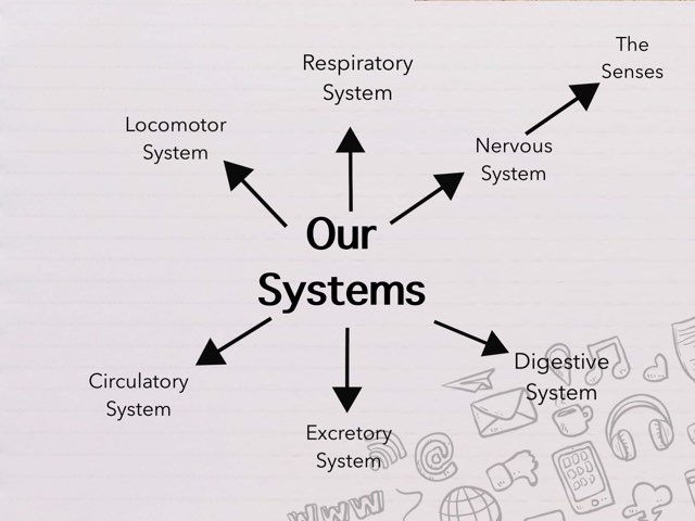 Our Systems by Steffanie Templeton