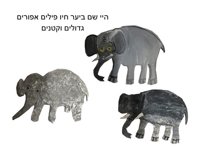 הפיל שרצה להיות הכי רמה  נמוכה  by TinyTap creator