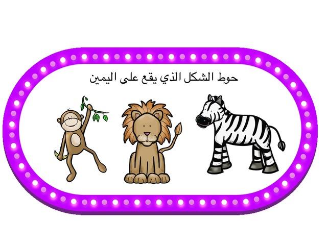 الموقع من الفراغ by Marwa Reda