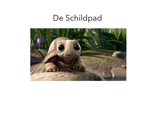 Praten Als Een Schildpad by Anne Van eup