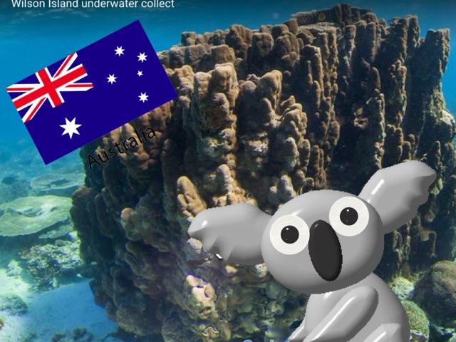 6202澳洲 by 辛亥樂園 數位學習