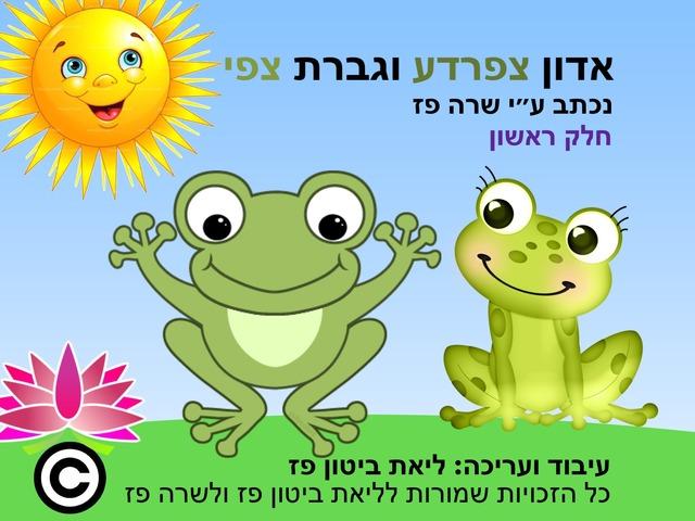 אדון צפרדע וגברת צפי חלק ראשון by Liat Bitton-paz
