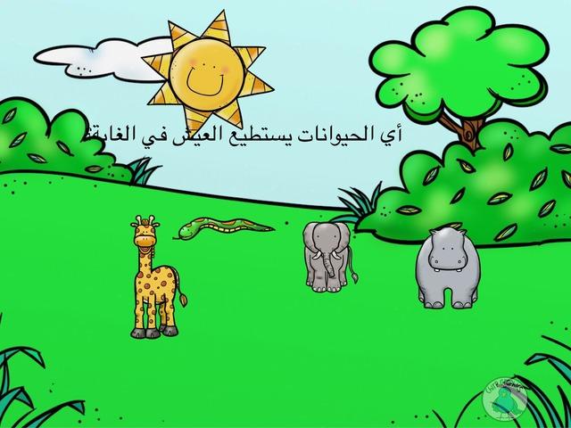 الحديقة by Nurah Al.ayafi