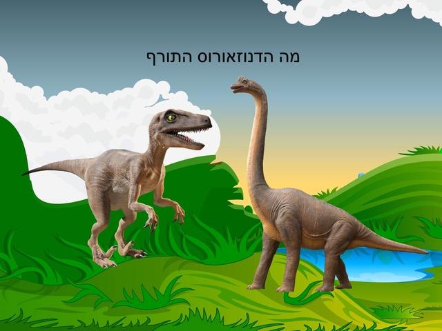 דינוזאור by Sela sade