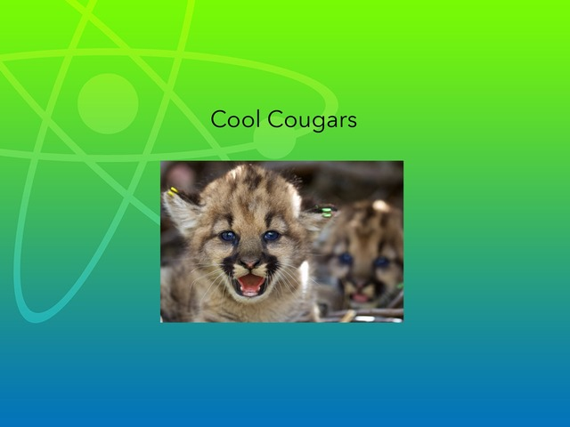 Cool cougars by Hulstrom 1st Grade