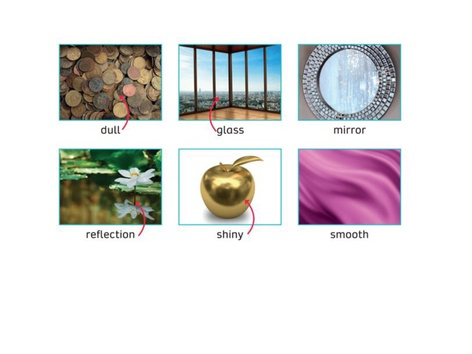 Vocabulary  by Carolina Juare Chave